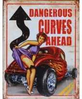 Metalen wandplaat dangerous curves ahead