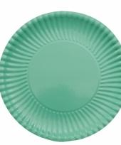 Mint groene kartonnen bordjes 23 cm
