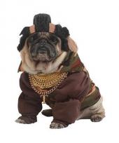 Mister strong kostuum voor hongen