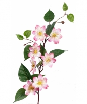 Namaak plant roze clematis 80 cm