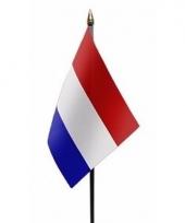 Nederlandse landenvlag op stokje