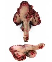 Nep penis met bloed en botten