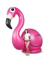 Opblaas flamingo xxl