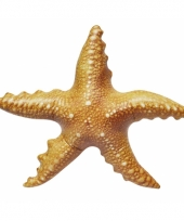 Opblaasbare zeester 51 cm