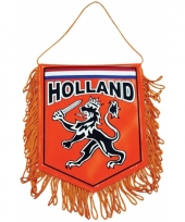 Oranje auto banier 15 x 10 cm