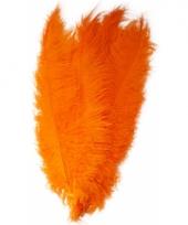 Oranje grote sier veertjes 50 cm