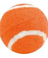 Oranje hondenballetje