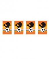 Oranje supporters vlaggenlijn 10 m