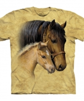 Paard met veulentje shirt the mountain