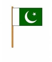 Pakistan versiering zwaaivlag