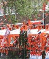 Pakket oranje feestartikelen groot