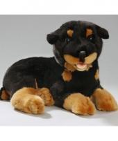 Pluche knuffel rottweiler hond 35 cm