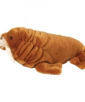 Pluche knuffeldier walrussen 30 cm