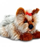 Pluche yorkie hond 35 cm