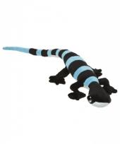 Pluche zwart met blauwe knuffel gekkos 62 cm