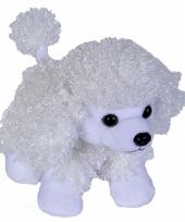 Poedel hondenknuffel wit 18 cm