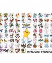 Pokemons soorten maxi poster 61 x 91 cm