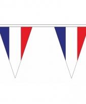 Polyester slinger met frankrijk vlaggetjes 10086617