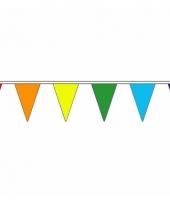 Polyester slinger met regenboog vlaggetjes 20 m