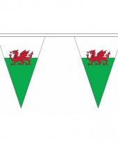 Polyester slinger met wales vlaggetjes