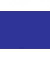 Polyester vlag in de kleur blauw