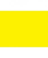 Polyester vlag in de kleur geel