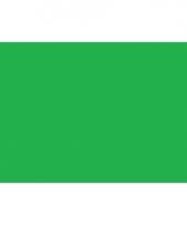 Polyester vlag in de kleur groen
