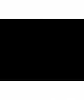 Polyester vlag in de kleur zwart