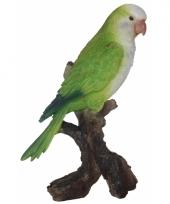 Polystone beeldje groene dwergpapegaai