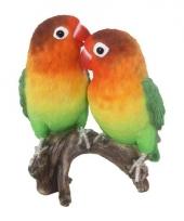 Polystone tuinbeeld lovebird papegaai 38 cm
