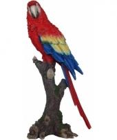 Polystone tuinbeeld papegaai vogel 38 cm