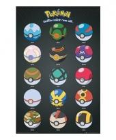 Poster met pokeballs