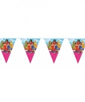 Prinsessia vlaggenlijnen 10 meter