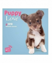 Puppy kalender 2018