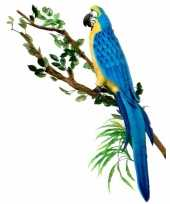 Realistische blauwe ara knuffel 72 cm