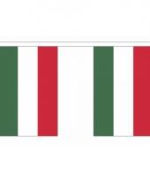 Rechthoekige hongarije vlaggenlijn