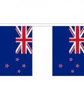 Rechthoekige nieuw zeeland vlaggenlijn