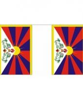 Rechthoekige vlaggenlijn tibet 9 m