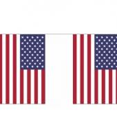 Rechthoekige vlaggenlijn usa