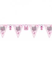 Roze geboorte vlaggenlijn 6 meter