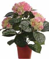 Roze groene namaak hortensia in pot 36 cm