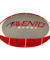 Rugby ballen 10054000
