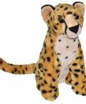 Safaridieren knuffels panter bruin 35 cm