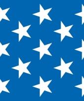 Scenesetter blauw met sterretjes