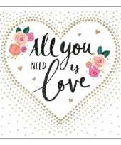Servetten all you need is love 3 laags 40 st