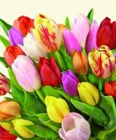 Servetten bos tulpen 20 stuks
