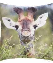 Sierkussen met print van giraffe 30 x 30 cm