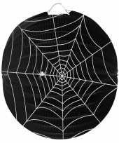 Sint maarten lampion spinnenweb