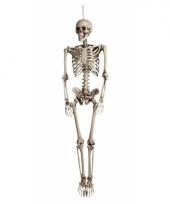 Skeletten pop decoratie 160 cm