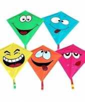Smiley vlieger gekleurd